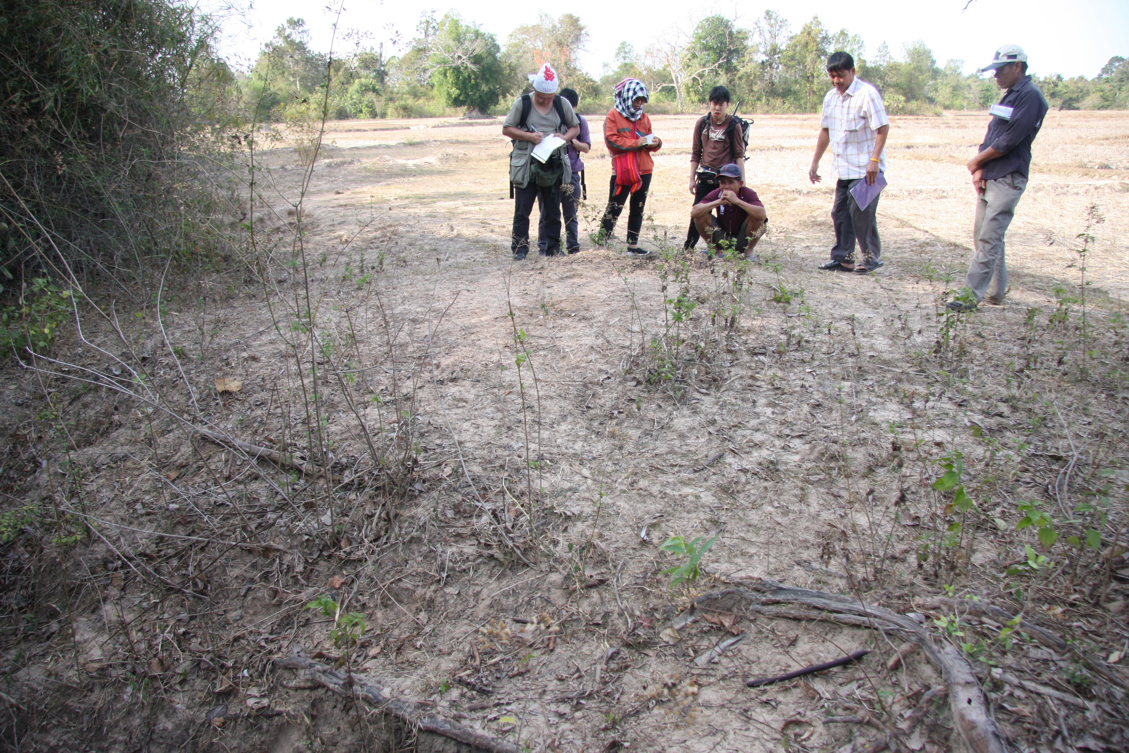 写真1 ナ・タイ村調査の様子(撮影:筆者)