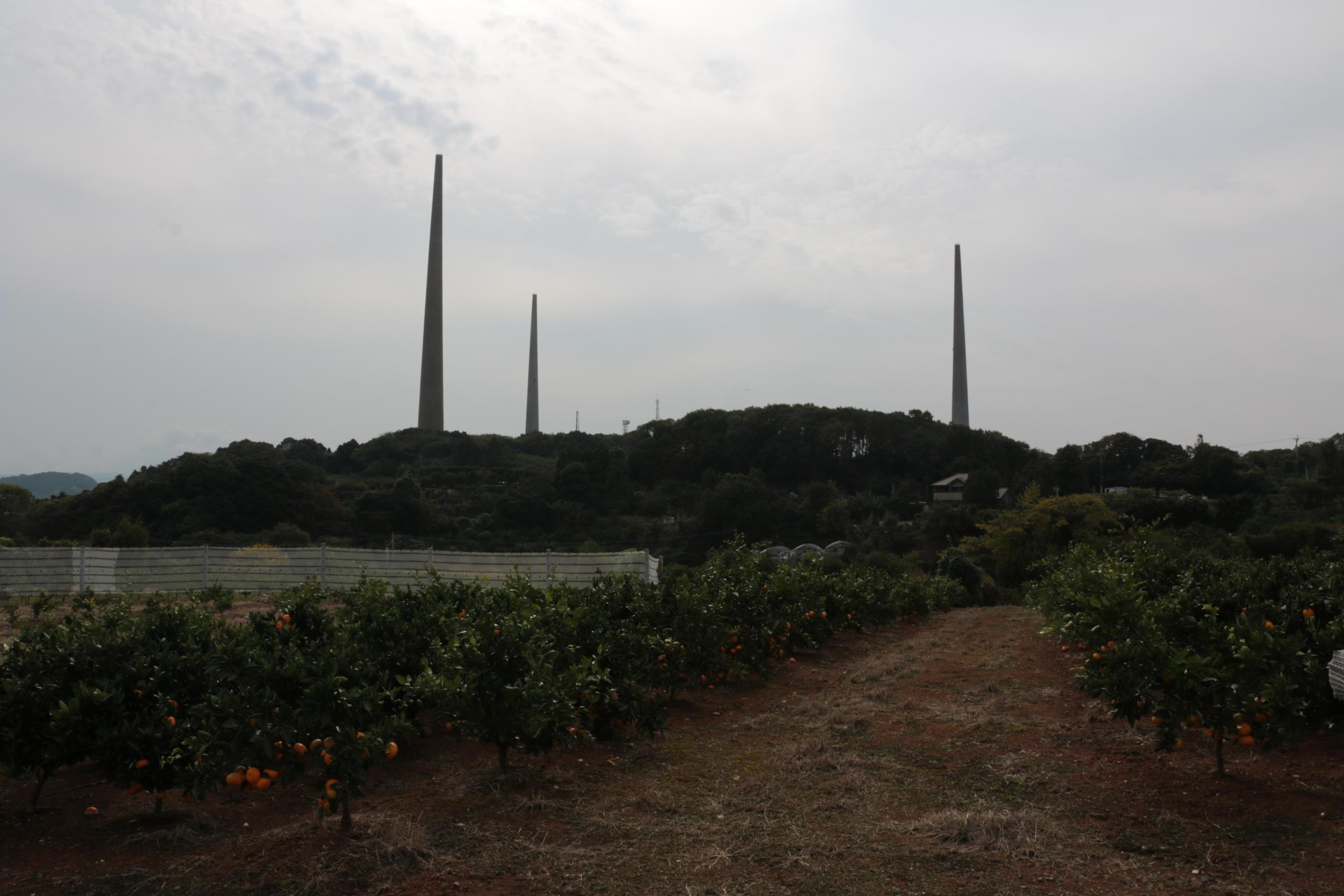 針尾島_02_地点の風景_s