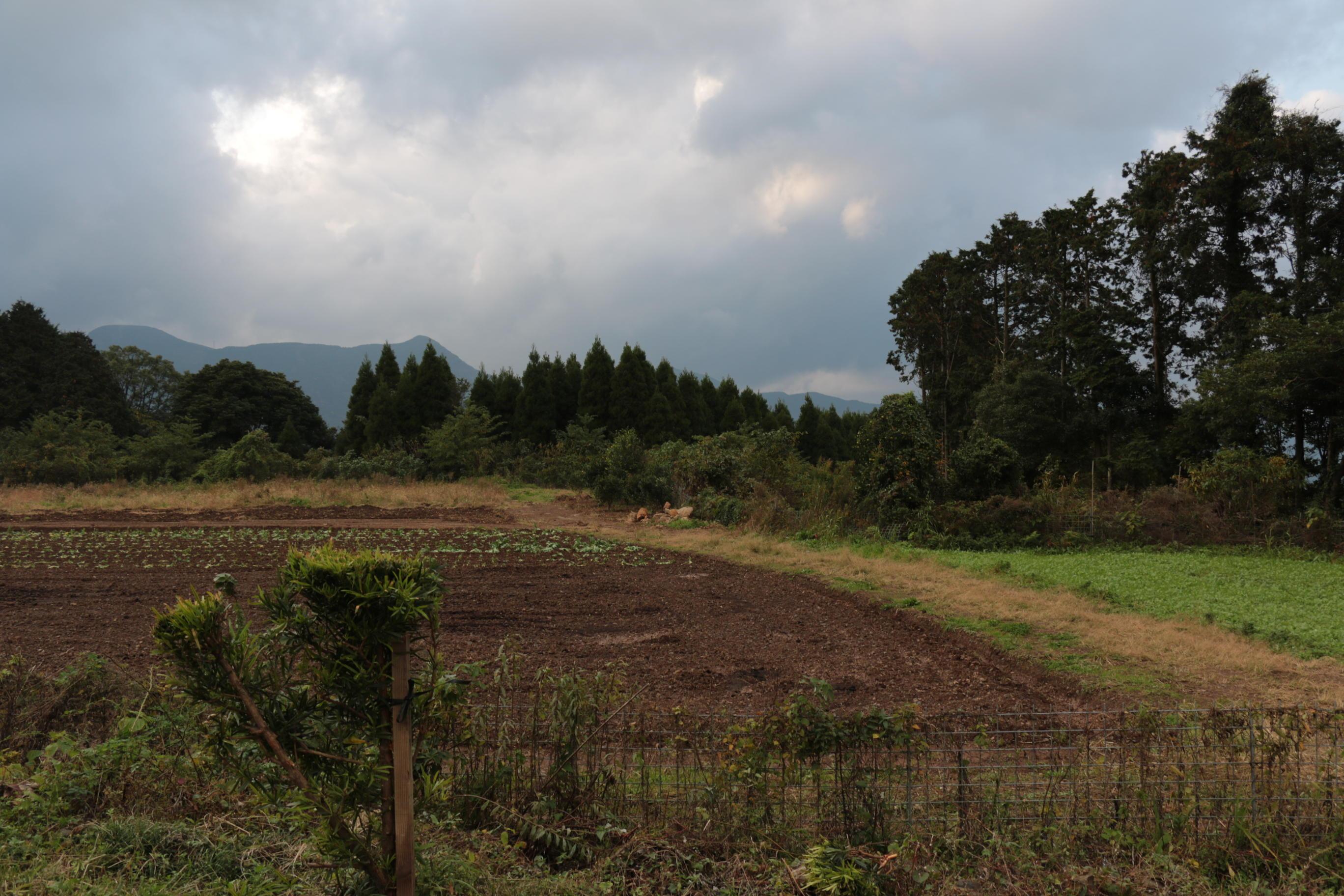 腰岳①_01_地点の風景_s